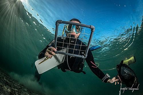 Formación de Snorkel Science